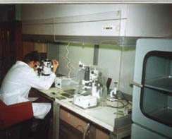 Working place of laboratory assistant