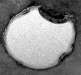 Образец из стали Т91 после коррозионных испытаний в потоке Pb-Bi на стенде CU-2M при Т=550° С в течение 16547 часов и С[О] = (1-4)х10-6 вес % (хвостовик образца).